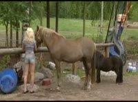 Голые девушки в сарае для лошадей