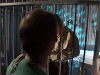 Медсестра пришла к парню