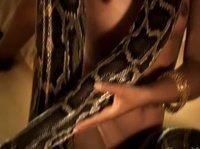 Красотка развлекается со змеей